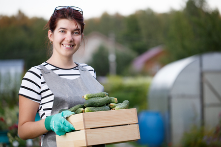 Woman with harvest of cucumbers