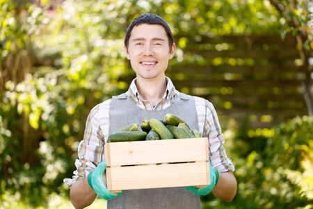 agronomist: Photo of brunet with cucumbers Stock Photo
