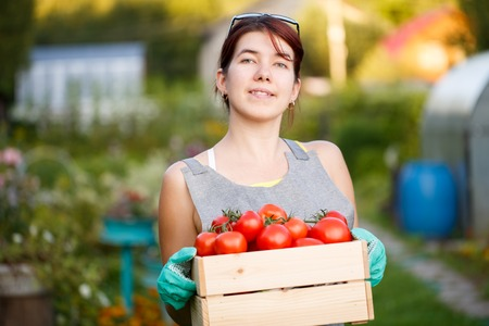 agronomist: Image of brunette with tomatoes