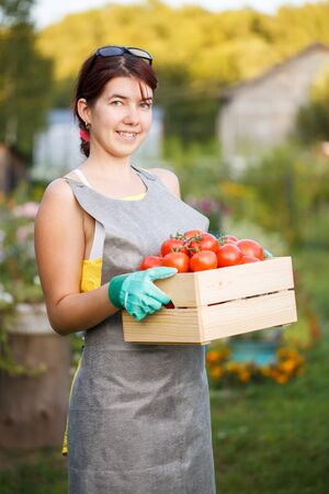 agronomist: Picture of woman with tomatoes