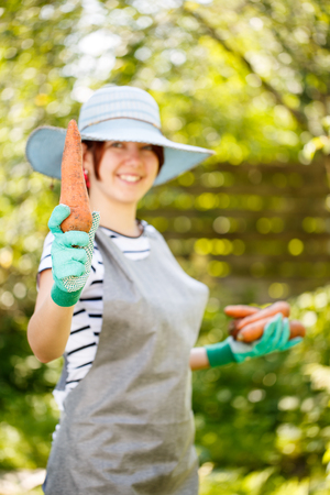 agronomist: Girl in gloves holds carrot Stock Photo