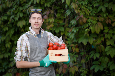 agronomist: Young brunette with tomato box