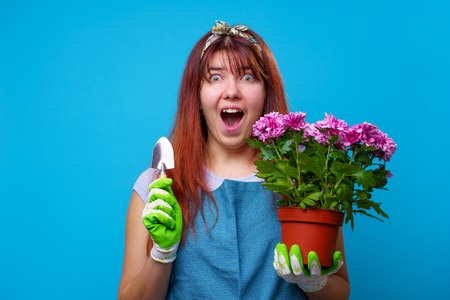 Image of surprised brunette with pot of chrysanthemums and an iron shovel