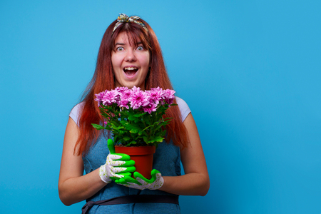 Photo of surprised brunette woman with chrysanthemums Stock Photo