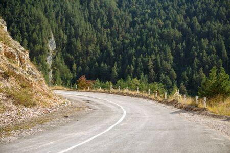 Photo of asphalt road in highlands, trees