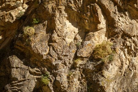 Image of rocky terrain with green plants 스톡 콘텐츠