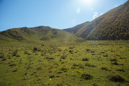 Photo of mountain area with blue clear sky, sun, green field on summer 스톡 콘텐츠 - 132110015