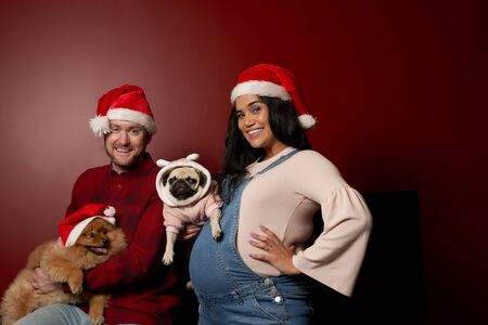 Smiling man and woman in santa cops with pug and spitz Stockfoto