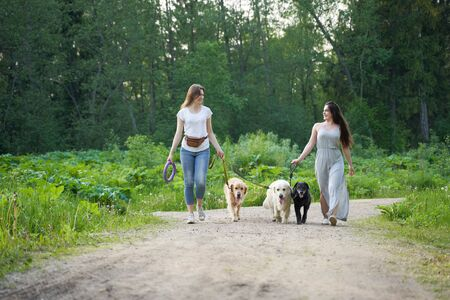 Two young women in full growth on walk with three dogs in park 版權商用圖片
