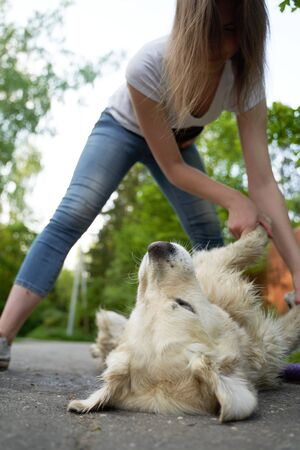 Young woman stroking dog lying on ground