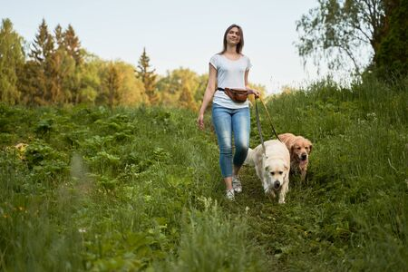 Young woman on walk with two dogs in park on summer 版權商用圖片