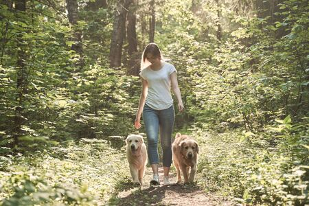 Woman on walk with two dogs in park on summer