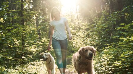 Girl on walk with two dogs in park on summer day 版權商用圖片