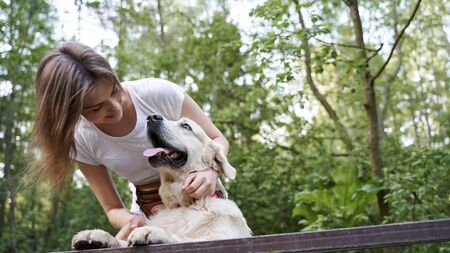 Happy girl with dog standing on bridge among forest on summer day