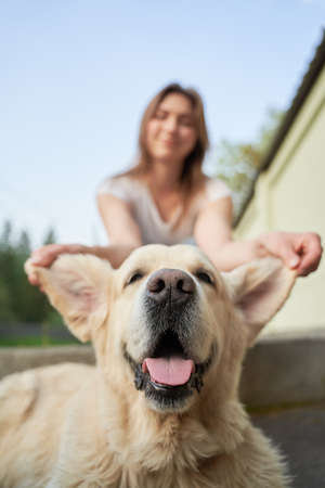 Close-up of girl holding dog by ears on summer day