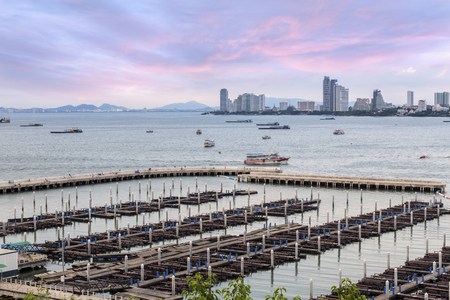 speed boat: Hight angle marina view from speed boat at  Bali Hai Pier, South Pattaya, Pattaya City Thailand