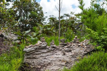 chaingmai: Beautiful stone in wild tropical.