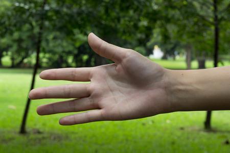 medium body: Woman hand