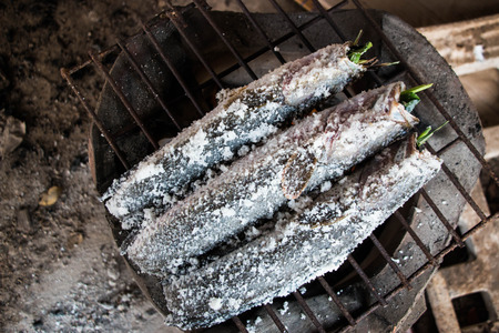 salmo trutta: Grilling fish