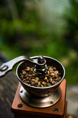 Grinder coffee bean