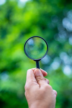 Look at tree throught a magnifying glass Фото со стока
