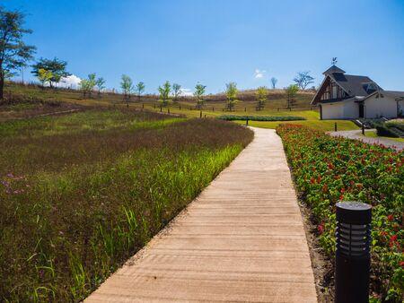 empedrado: road in the beautiful garden,walkway