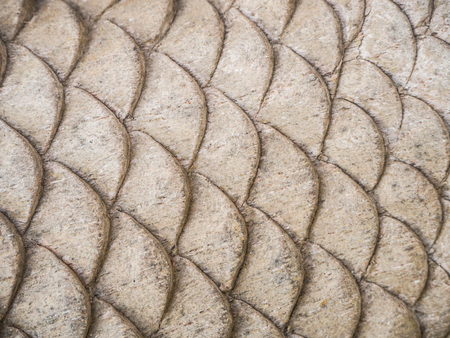 Wood carving fish shape