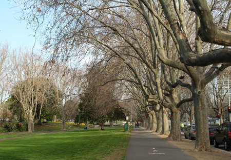 fitzroy garden melbourne australia photo