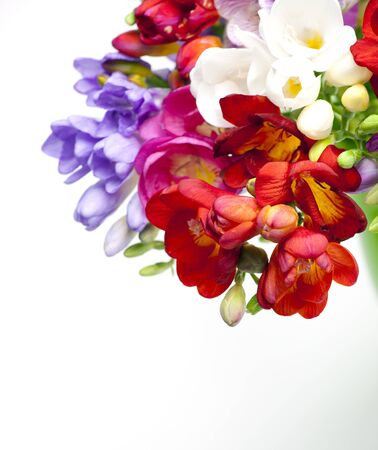 freesia: Beautiful bouquet of colorful freesia on a white background