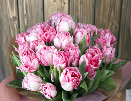Large beautiful bouquet of fresh pink tulips blooming Stock Photo