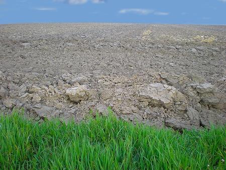 Gruntów rolnych w pochmurny dzień