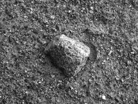 Black And White Rock Laying On The Beach