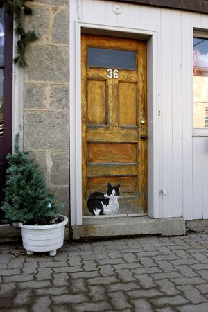 Doorway with painted cat Stock Photo
