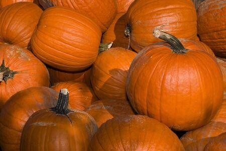 abound: Pile of pumpkins
