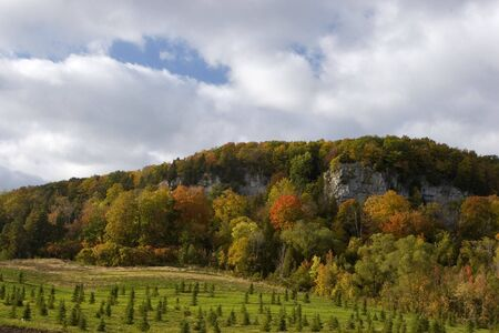 Rattlesnake Point on the Niagara Escarpment
