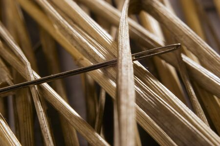 Macro image of a needle in a haystack  Stock Photo