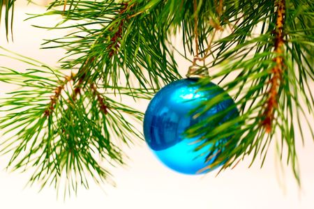 cristmas card: Cristmas card with decoration and cristmas-tree