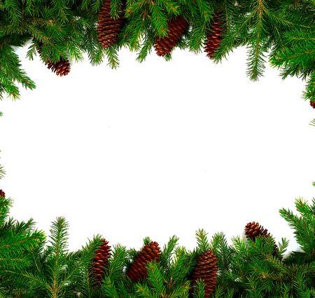 evergreen branch: Navidad marco de sus felicitaciones y mejores deseos. Fur-las ramas de los �rboles y el cono. Estudio de la luz.