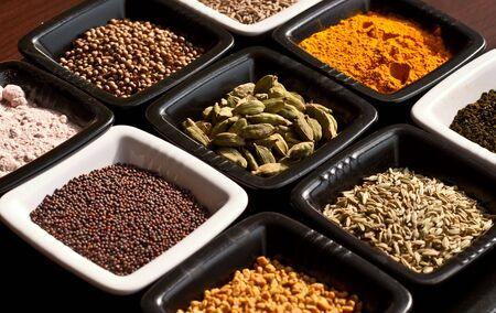 indian spices: Een reeks van originele Indiase kruiden