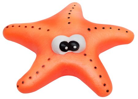 seastar: Toy starfish isolated on white background. The concept of tourism and sea travel