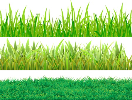 Set grass. Three samples for different uses. Vector