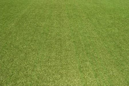 cricket: La trama del campo sportivo di copertura alle erbe. � utilizzato in baseball, calcio, calcio, rugby, tennis, golf, hockey su prato