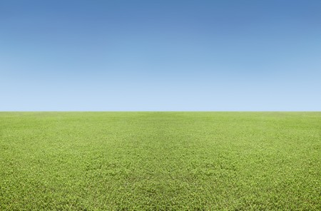 Grass and sky photo