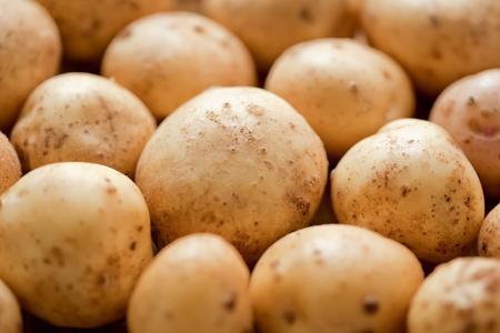 viands: Fresh potatoes