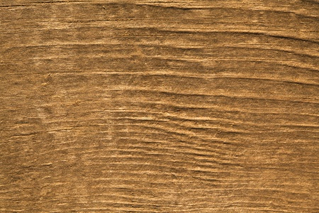 countrified: Texture of wood