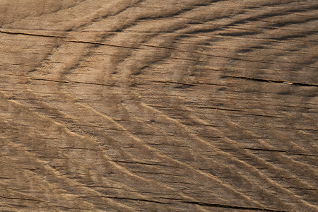 birchwood: Close up texture of wood. Stock Photo