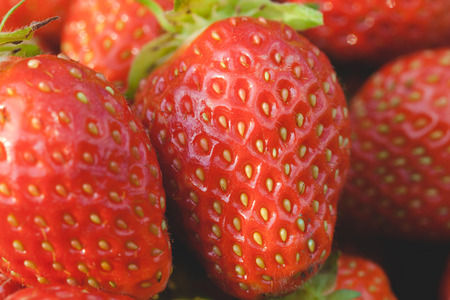 viands: Pile of ripe garden strawberries close-up. Shallow depth of field
