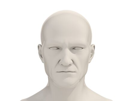 layman: Human head frontal view isolated on a white background