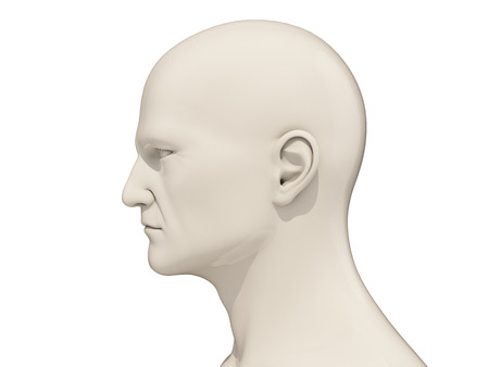 layman: Human head side view isolated on a white background