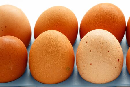poach: Fresh eggs close up on a white background Stock Photo
